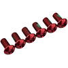 Red Cycling Products Rotor Bolts rot